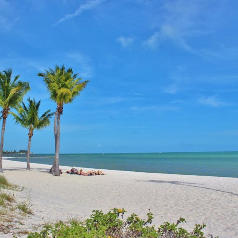 Enjoy Your Trip: The Best Things to Do in Duck Key, FL